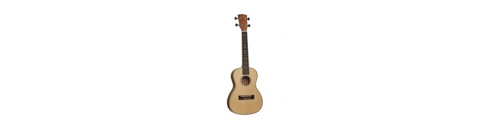 Musical Instruments & Accessories